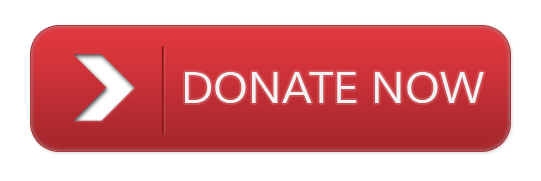 Donate Now Red Button transparent PNG - StickPNG